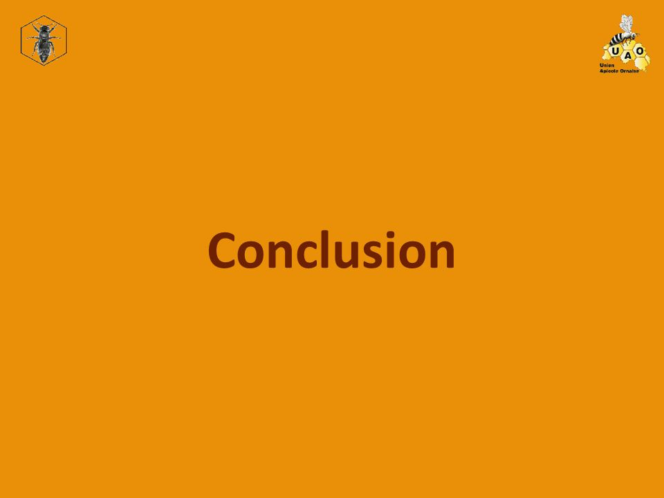 Conclusion 2.1 Scanner à diapositive
