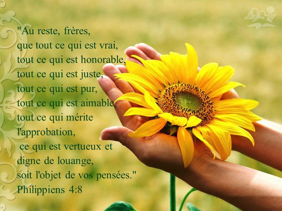 Au reste, frères, que tout ce qui est vrai, tout ce qui est honorable, tout ce qui est juste, tout ce qui est pur, tout ce qui est aimable, tout ce qui mérite l approbation, ce qui est vertueux et digne de louange, soit l objet de vos pensées. Philippiens 4:8