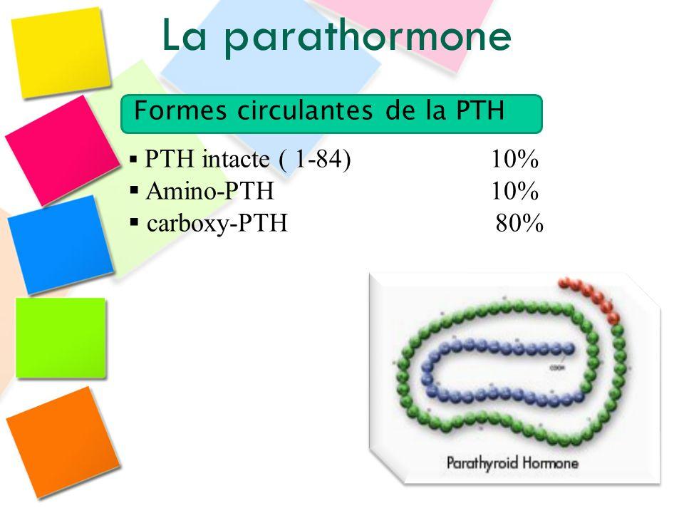 La parathormone Formes circulantes de la PTH Amino-PTH 10%