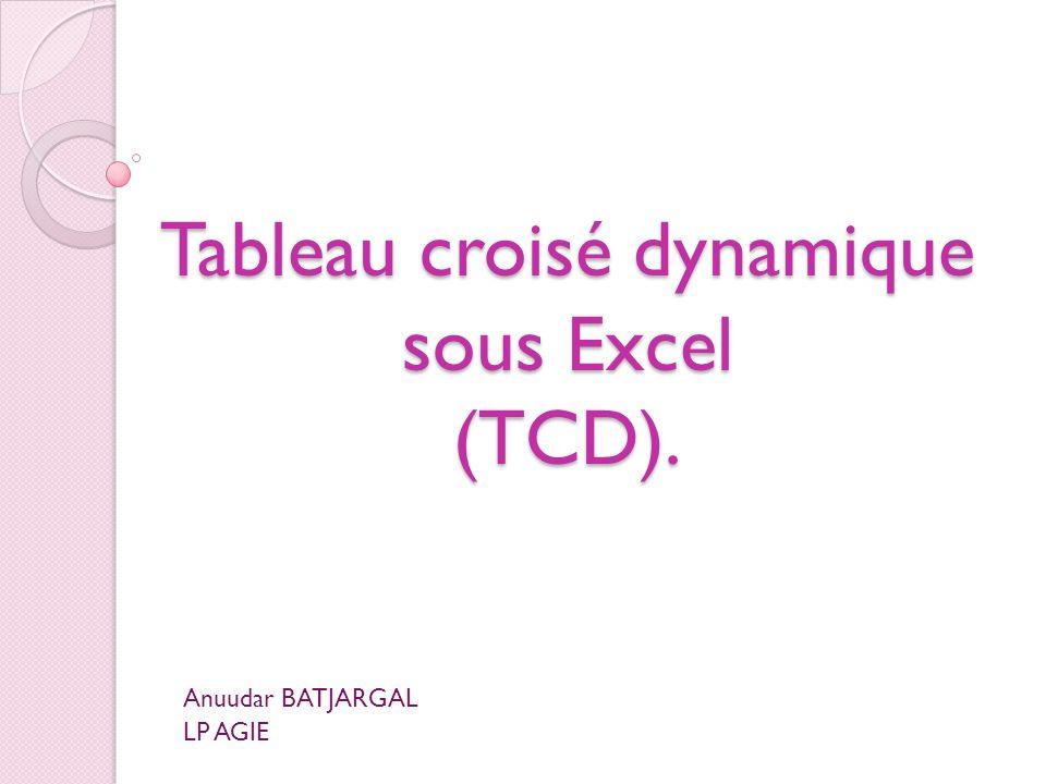 Tableau croisé dynamique sous Excel (TCD).