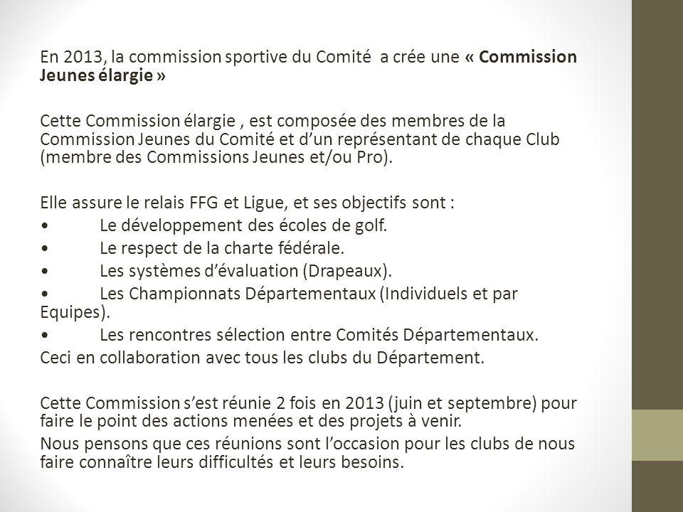 En 2013, la commission sportive du Comité a crée une « Commission Jeunes élargie » Cette Commission élargie , est composée des membres de la Commission Jeunes du Comité et d'un représentant de chaque Club (membre des Commissions Jeunes et/ou Pro).