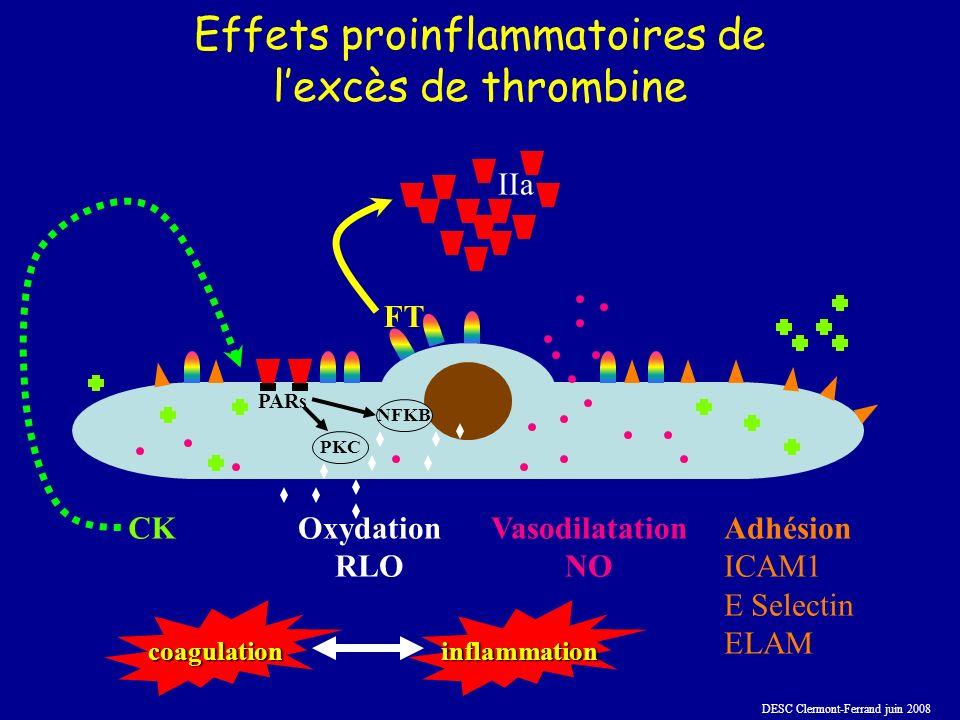 Effets proinflammatoires de l'excès de thrombine