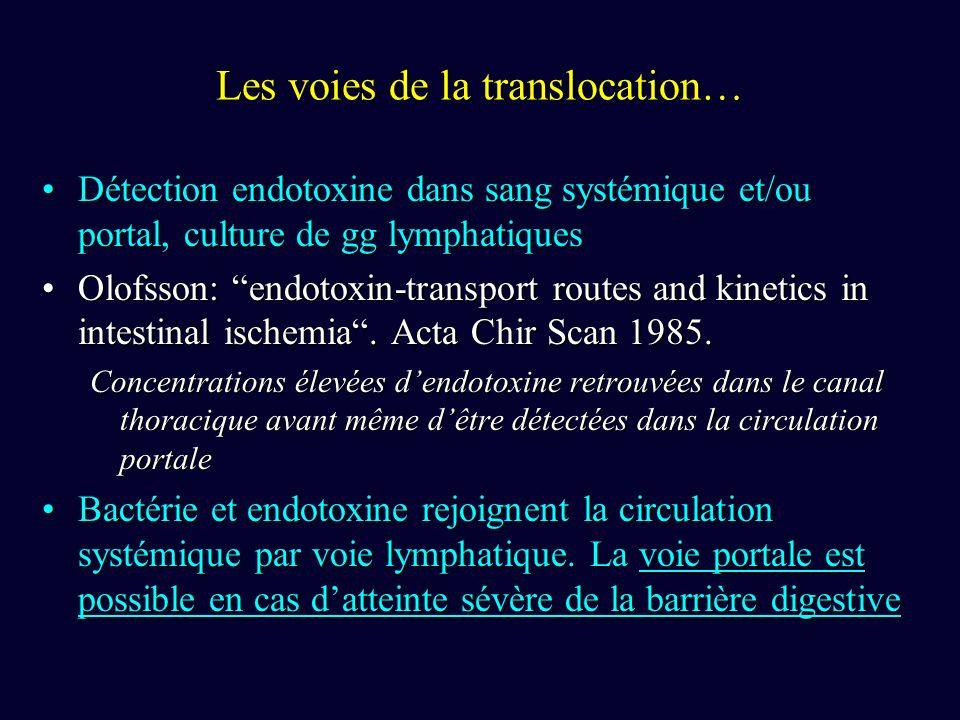 Les voies de la translocation…