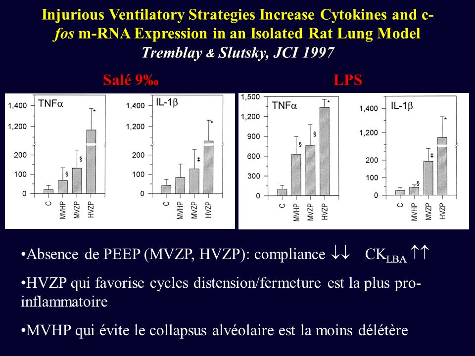 Injurious Ventilatory Strategies Increase Cytokines and c-fos m-RNA Expression in an Isolated Rat Lung Model Tremblay & Slutsky, JCI 1997