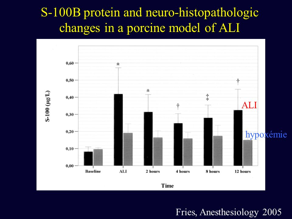 S-100B protein and neuro-histopathologic changes in a porcine model of ALI