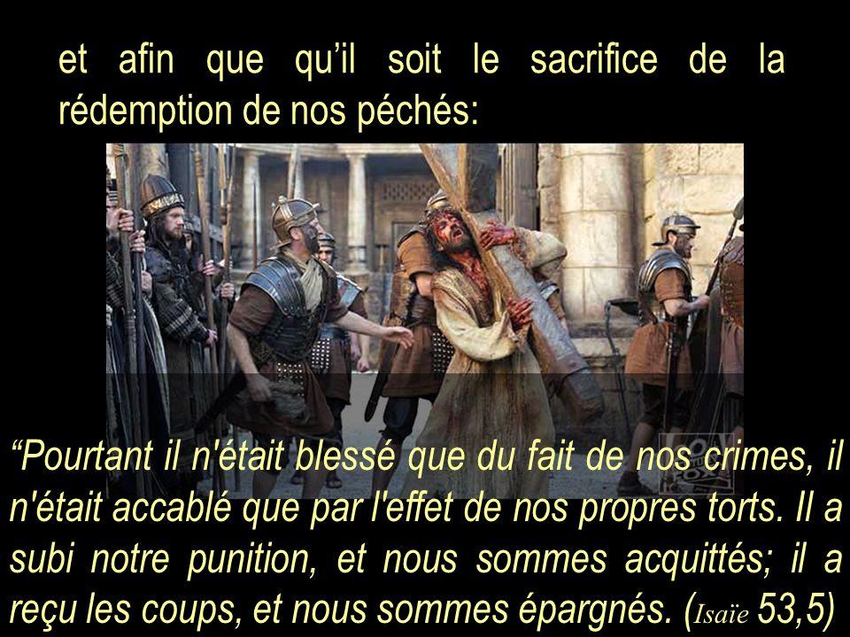 et afin que qu'il soit le sacrifice de la rédemption de nos péchés: