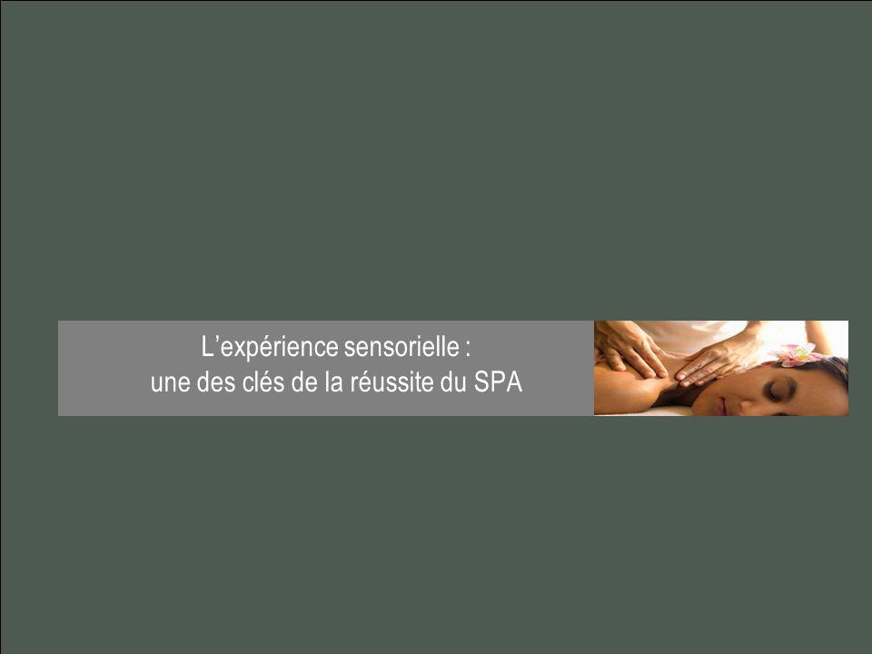 L'expérience sensorielle : une des clés de la réussite du SPA