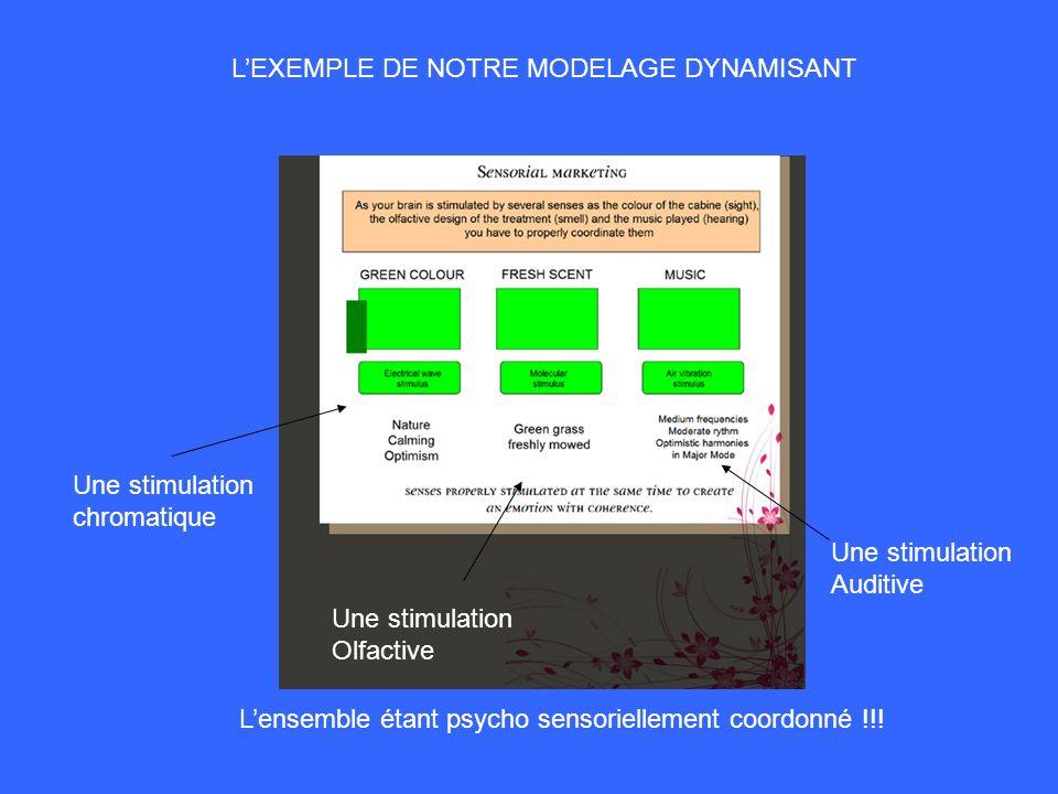 L'EXEMPLE DE NOTRE MODELAGE DYNAMISANT