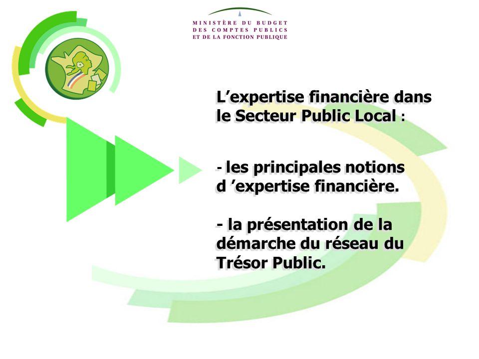 L'expertise financière dans le Secteur Public Local :