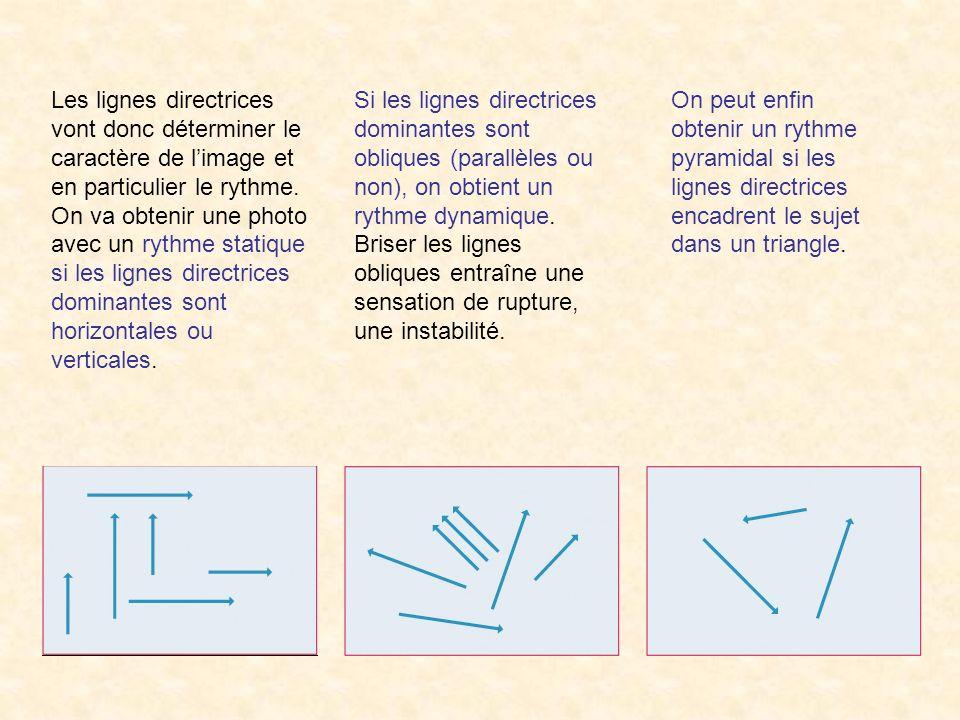 Les lignes directrices vont donc déterminer le caractère de l'image et en particulier le rythme. On va obtenir une photo avec un rythme statique si les lignes directrices dominantes sont horizontales ou verticales.