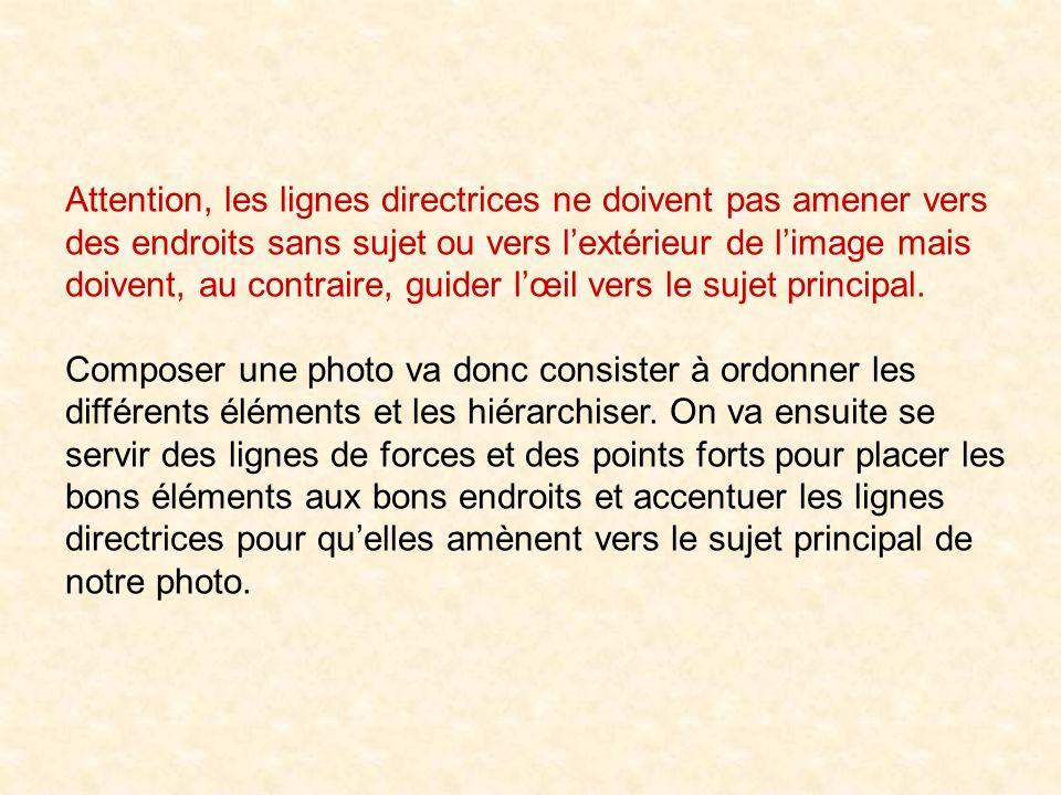 Attention, les lignes directrices ne doivent pas amener vers des endroits sans sujet ou vers l'extérieur de l'image mais doivent, au contraire, guider l'œil vers le sujet principal.