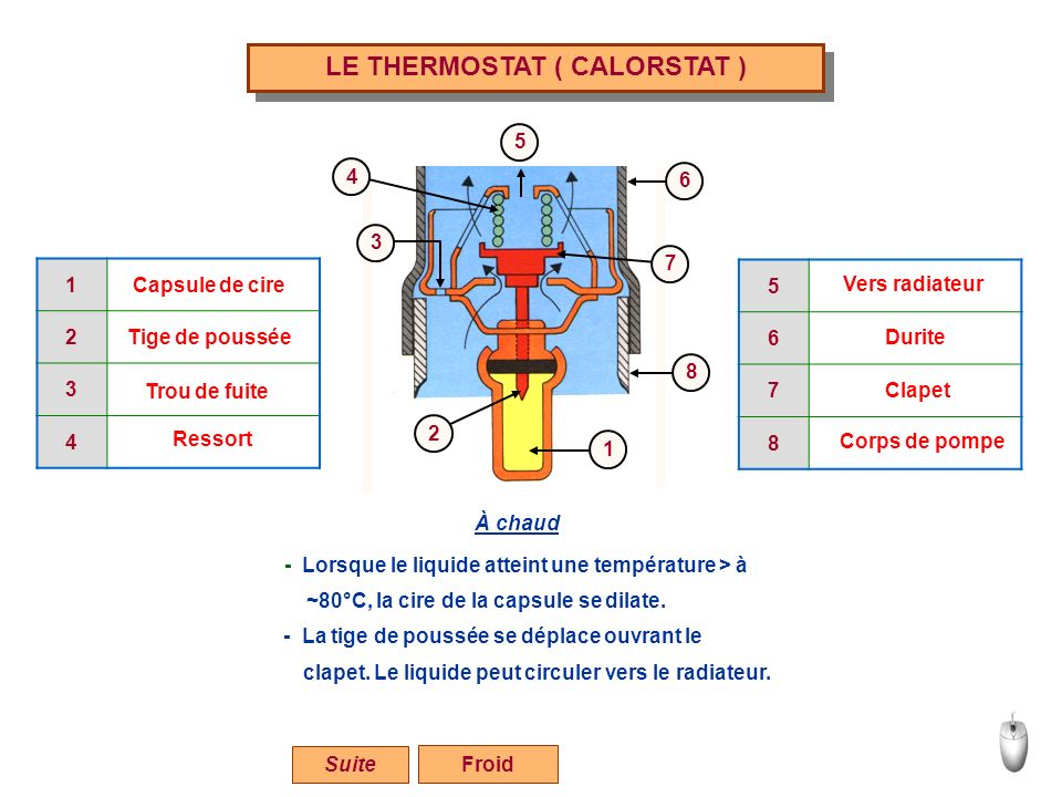 LE THERMOSTAT ( CALORSTAT )