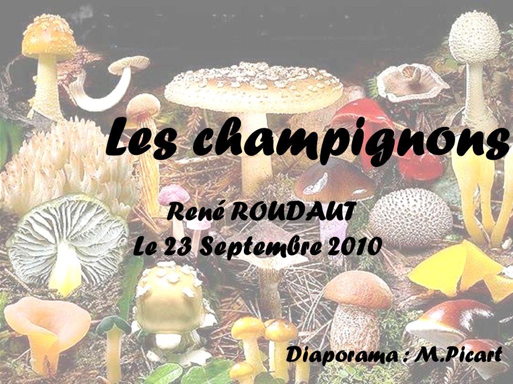Les champignons René ROUDAUT Le 23 Septembre 2010 Diaporama : M.Picart