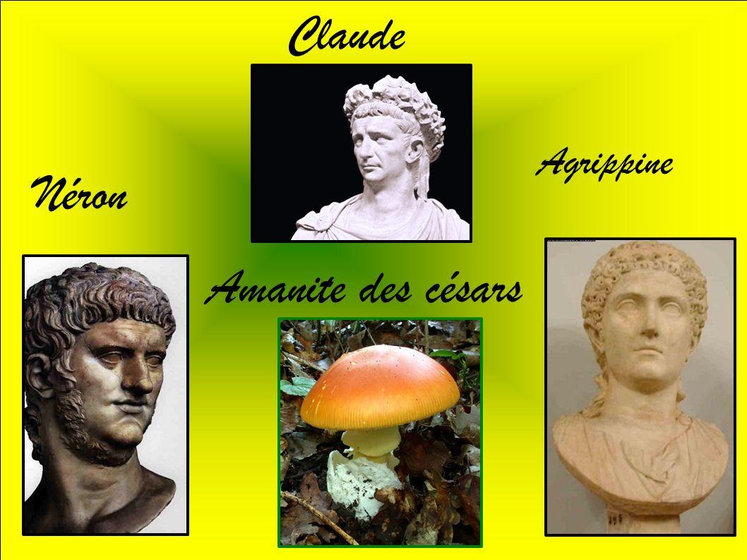 Claude Agrippine Néron Amanite des césars