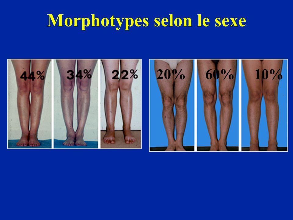 Morphotypes selon le sexe