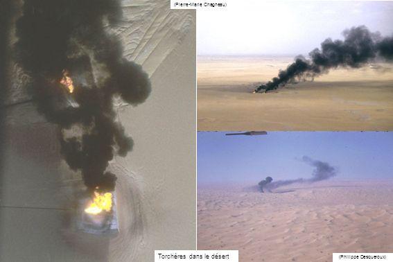 Torchères dans le désert