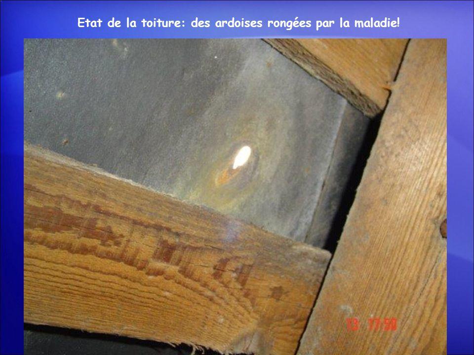 Etat de la toiture: des ardoises rongées par la maladie!