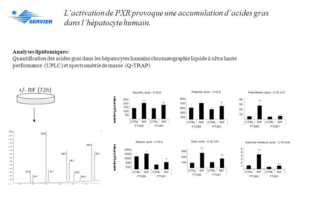 L'activation de PXR provoque une accumulation d'acides gras
