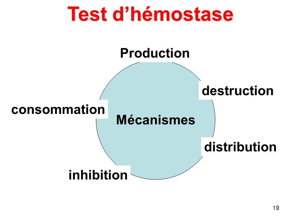 Test d'hémostase Production destruction Mécanismes consommation