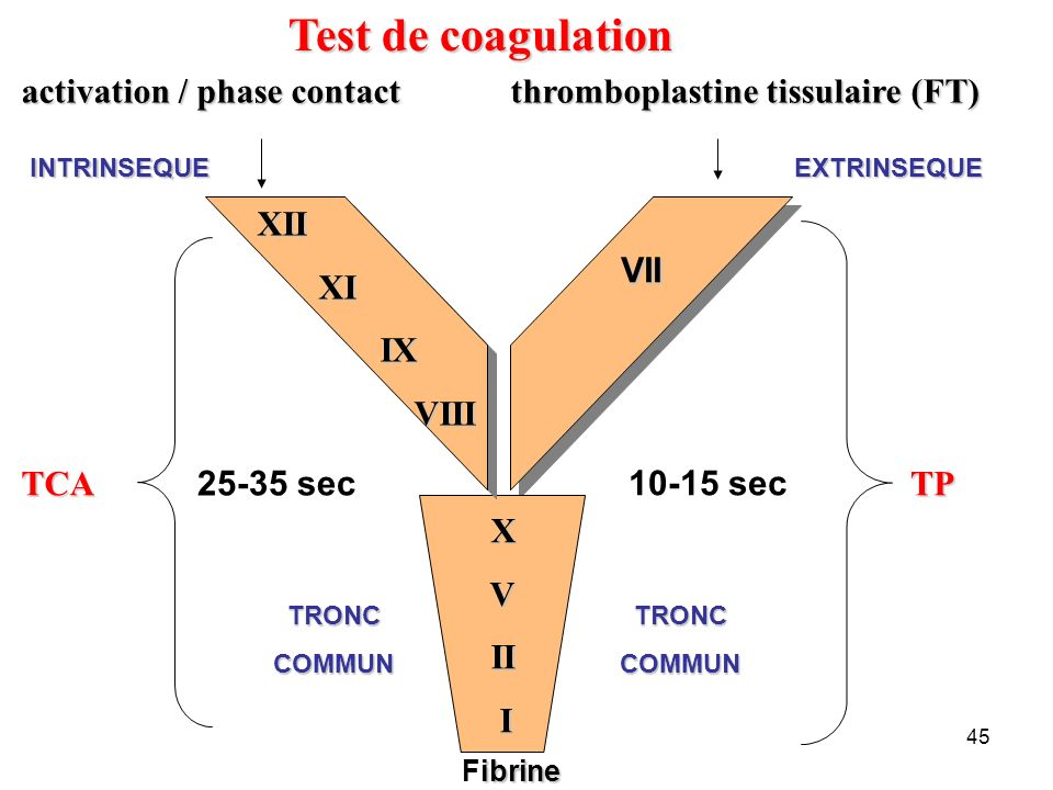 Test de coagulation VII activation / phase contact