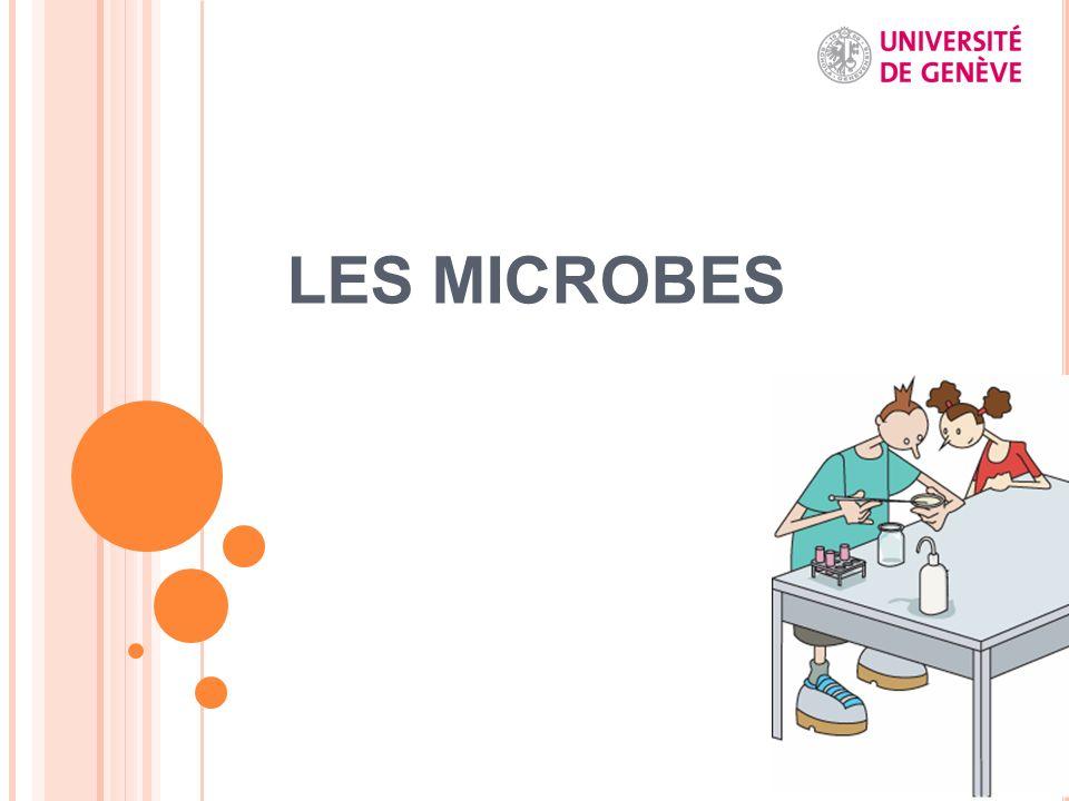 LES MICROBES Pour information: présentation effectuée en collaboration avec Maud Ulmann dans le cadre de l'université des enfants.