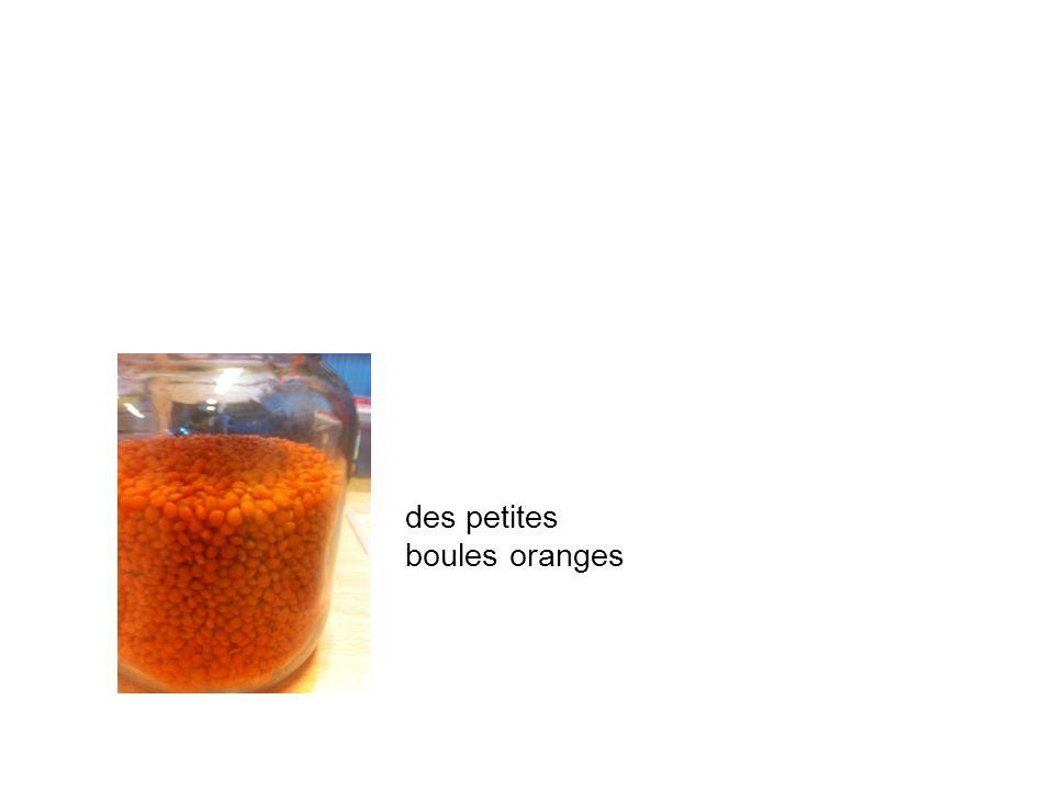des petites boules oranges