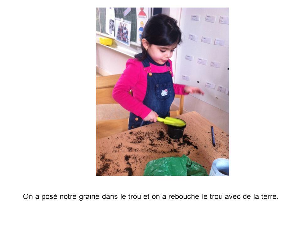 On a posé notre graine dans le trou et on a rebouché le trou avec de la terre.