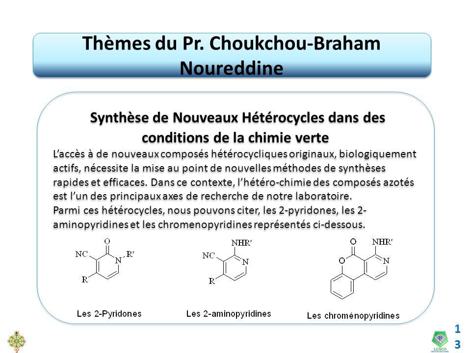 Thèmes du Pr. Choukchou-Braham Noureddine