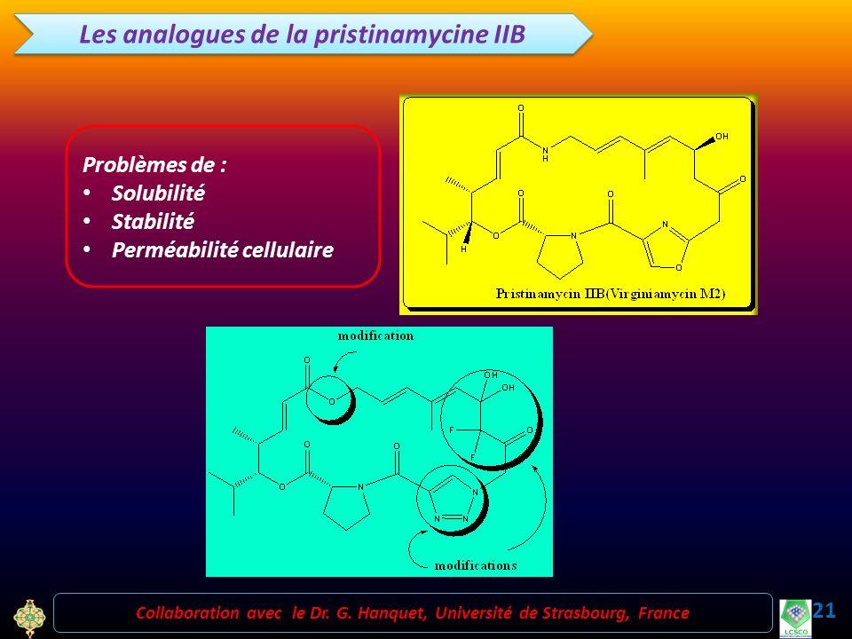 Les analogues de la pristinamycine IIB