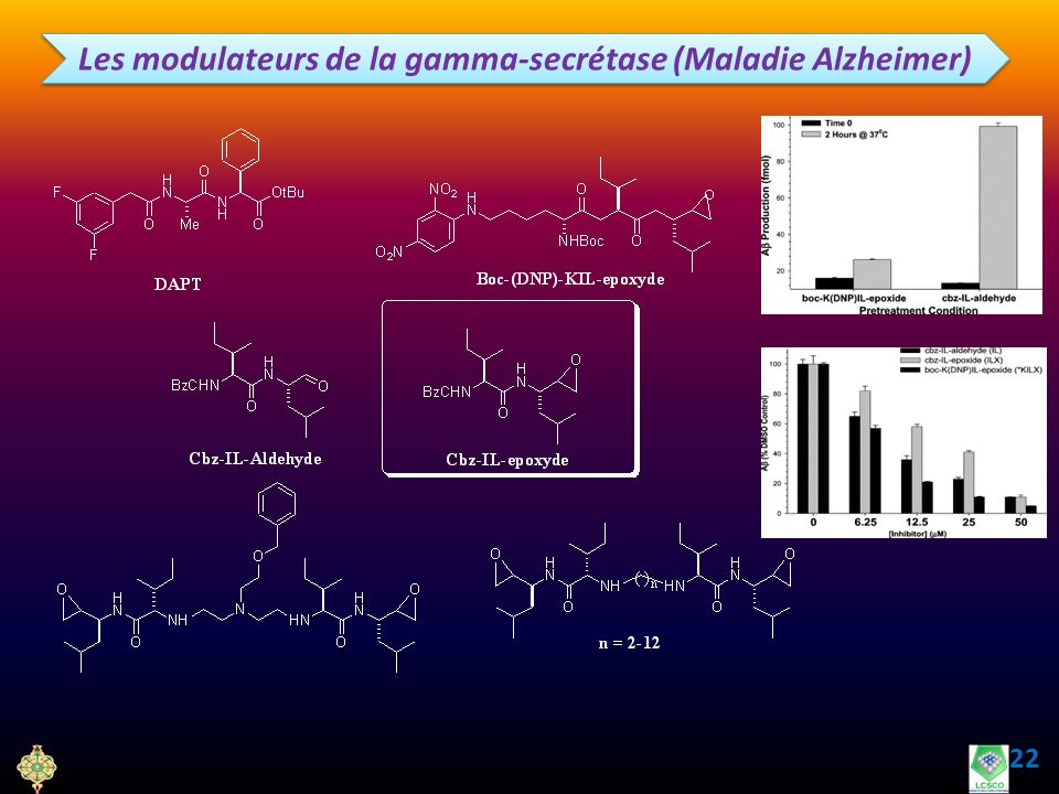 Les modulateurs de la gamma-secrétase (Maladie Alzheimer)