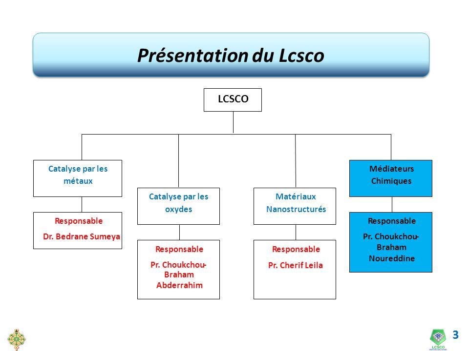 Présentation du Lcsco LCSCO Catalyse par les métaux oxydes Matériaux