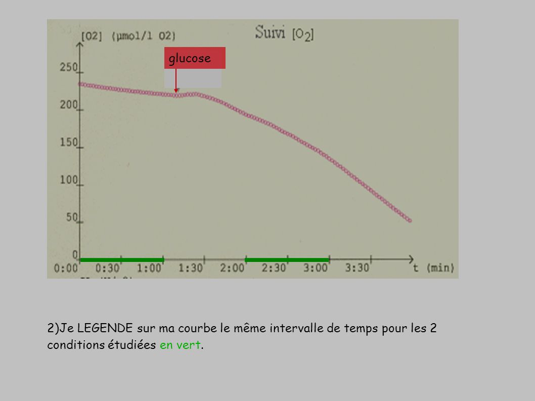 glucose 2)Je LEGENDE sur ma courbe le même intervalle de temps pour les 2 conditions étudiées en vert.