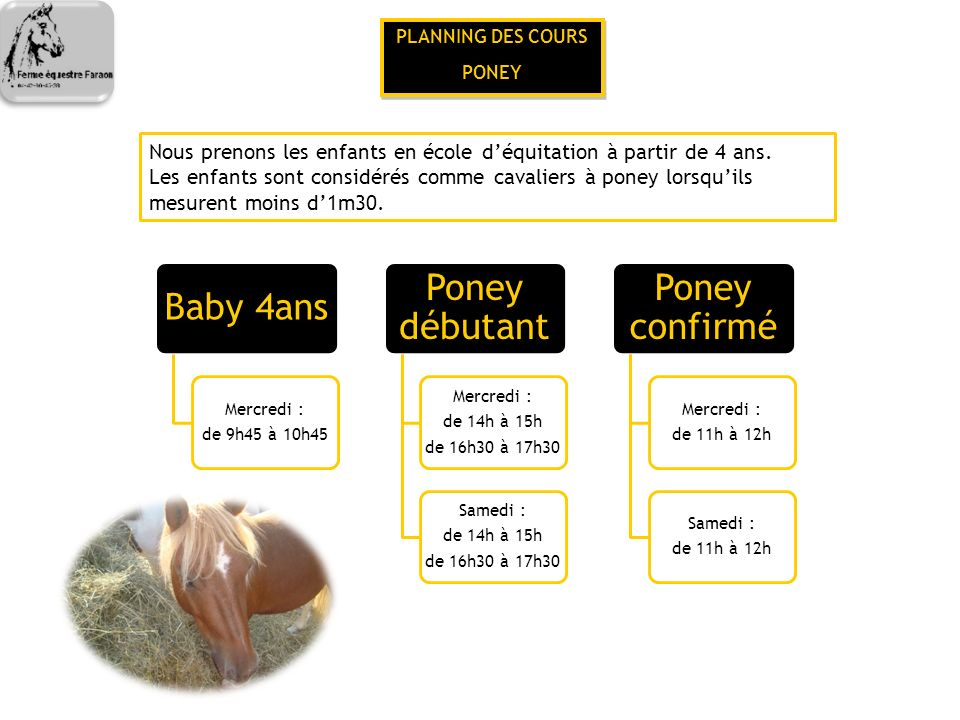 Baby 4ans Poney débutant Poney confirmé