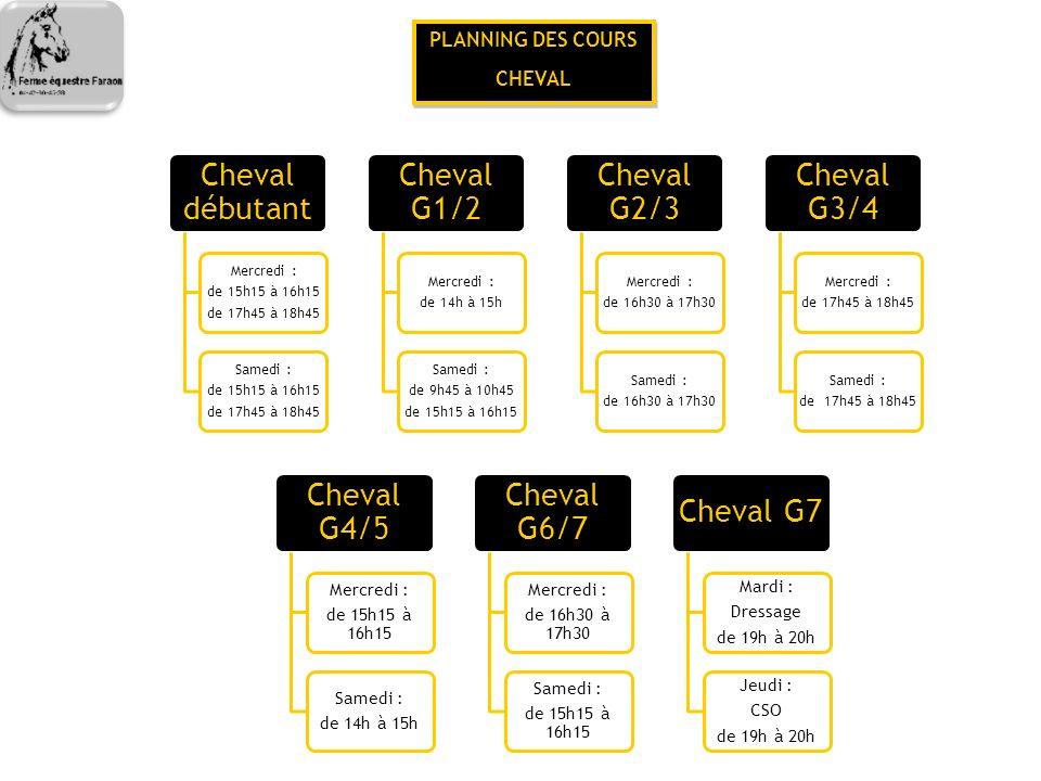 Cheval débutant Cheval G1/2 Cheval G2/3 Cheval G3/4 Cheval G4/5