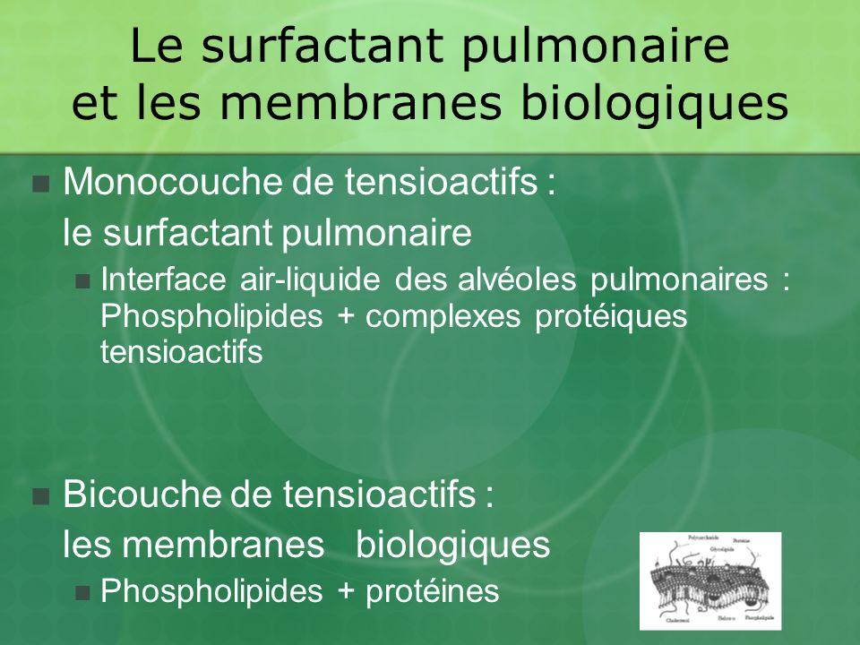 Le surfactant pulmonaire et les membranes biologiques