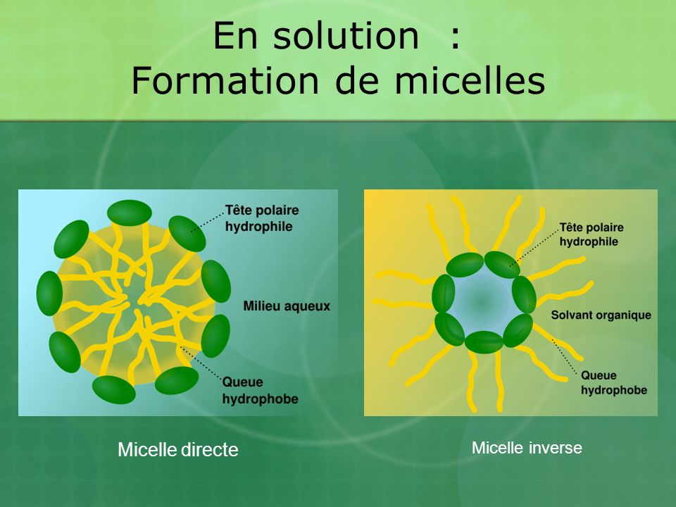 En solution : Formation de micelles