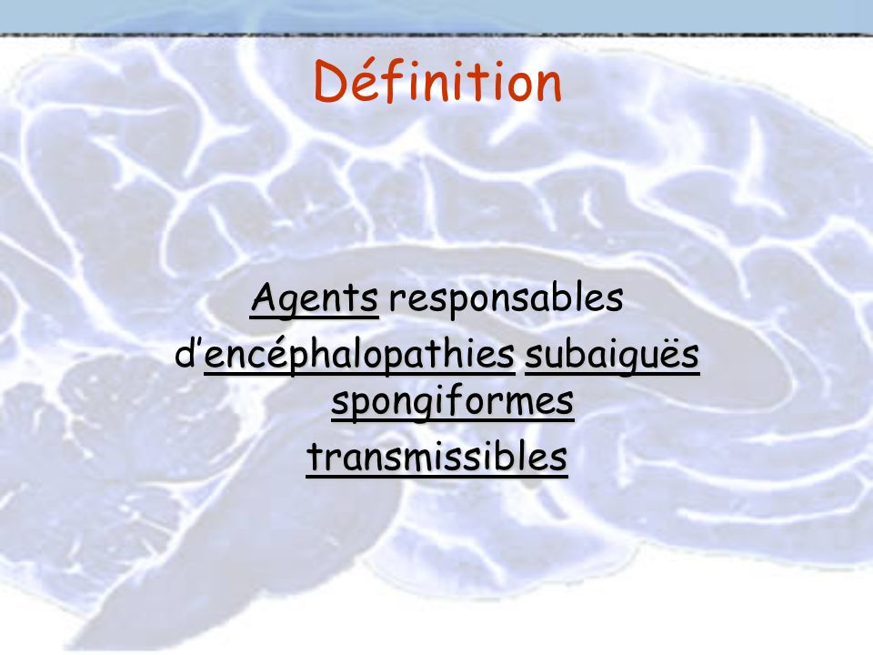 d'encéphalopathies subaiguës spongiformes