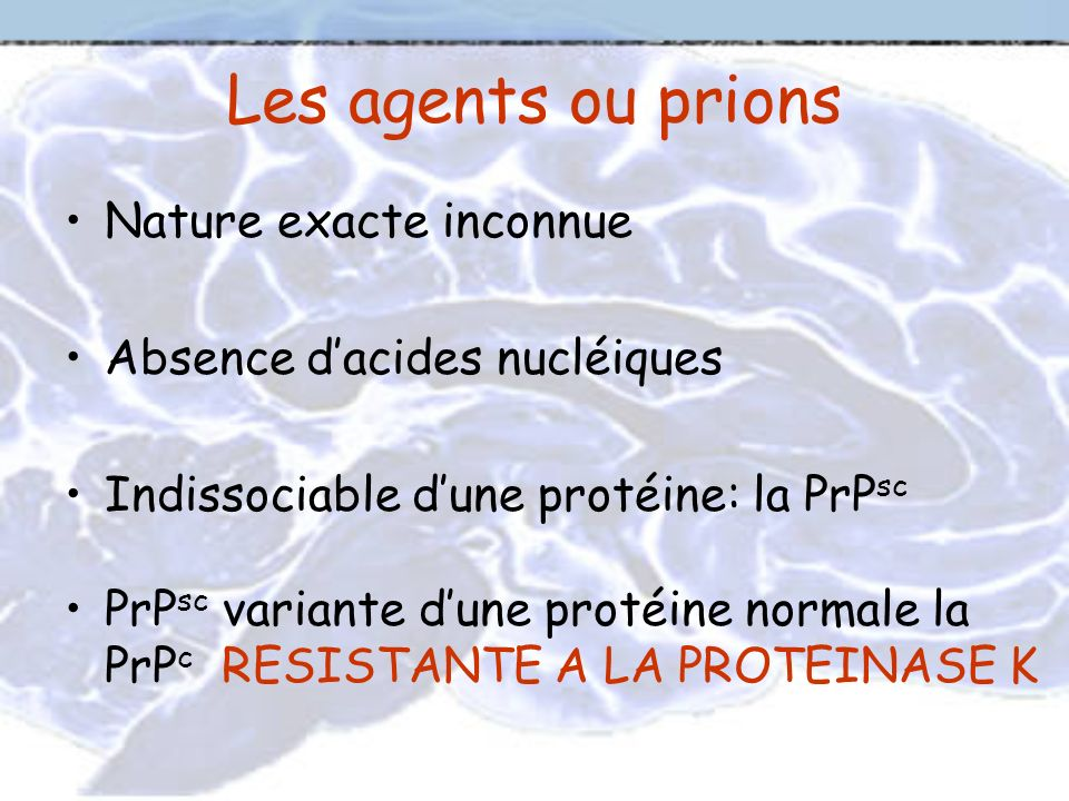 Les agents ou prions Nature exacte inconnue