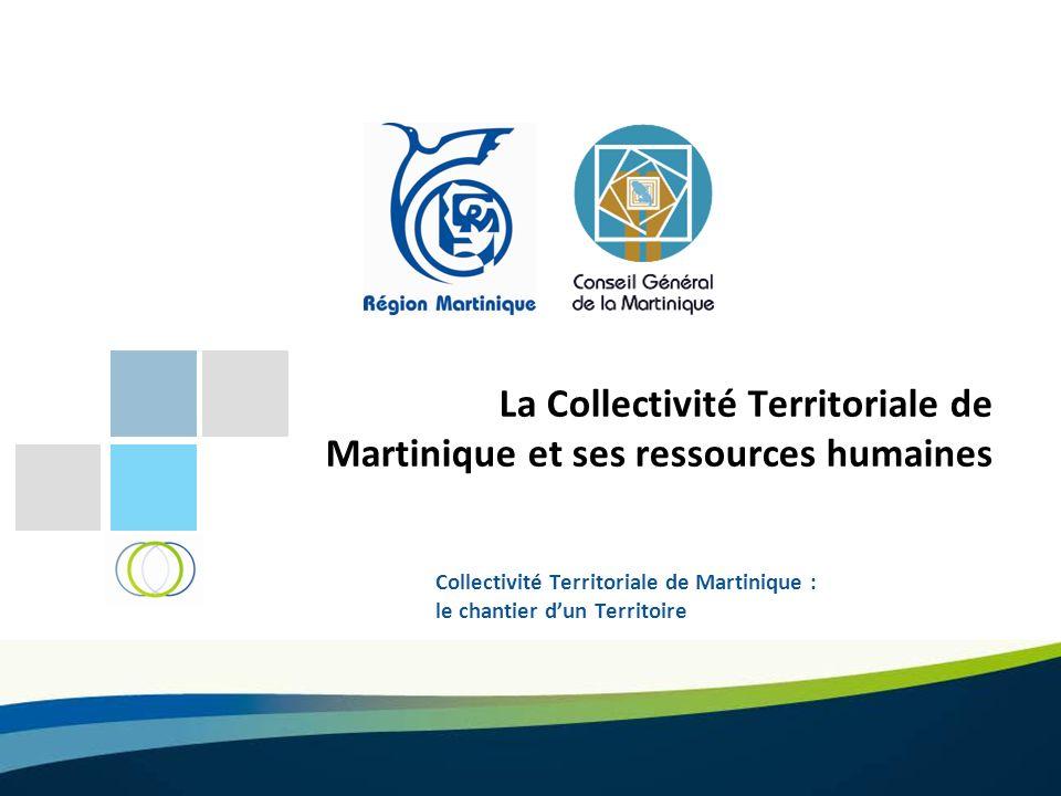 La Collectivité Territoriale de Martinique et ses ressources humaines