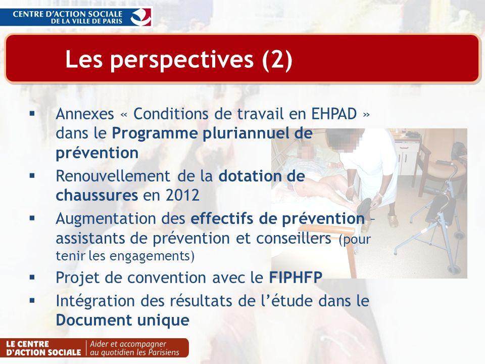 Les perspectives (2) Annexes « Conditions de travail en EHPAD » dans le Programme pluriannuel de prévention.