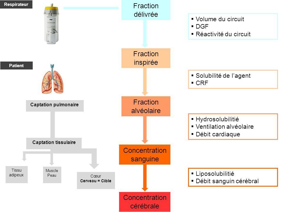 Fraction délivrée Fraction inspirée Fraction alvéolaire Concentration