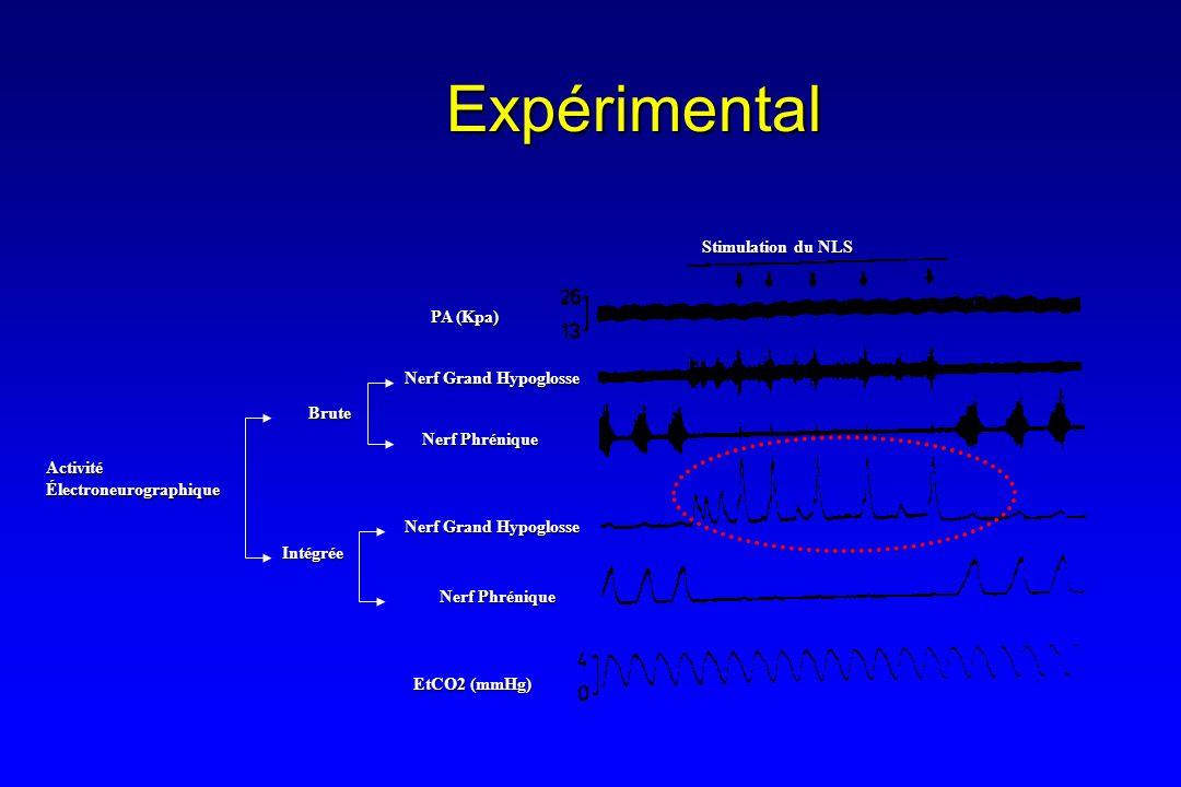 Expérimental Stimulation du NLS PA (Kpa) Nerf Grand Hypoglosse Brute