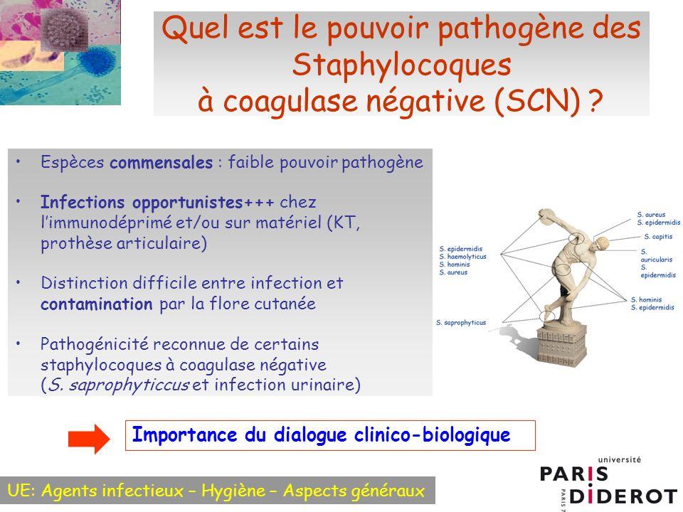 Quel est le pouvoir pathogène des Staphylocoques à coagulase négative (SCN)