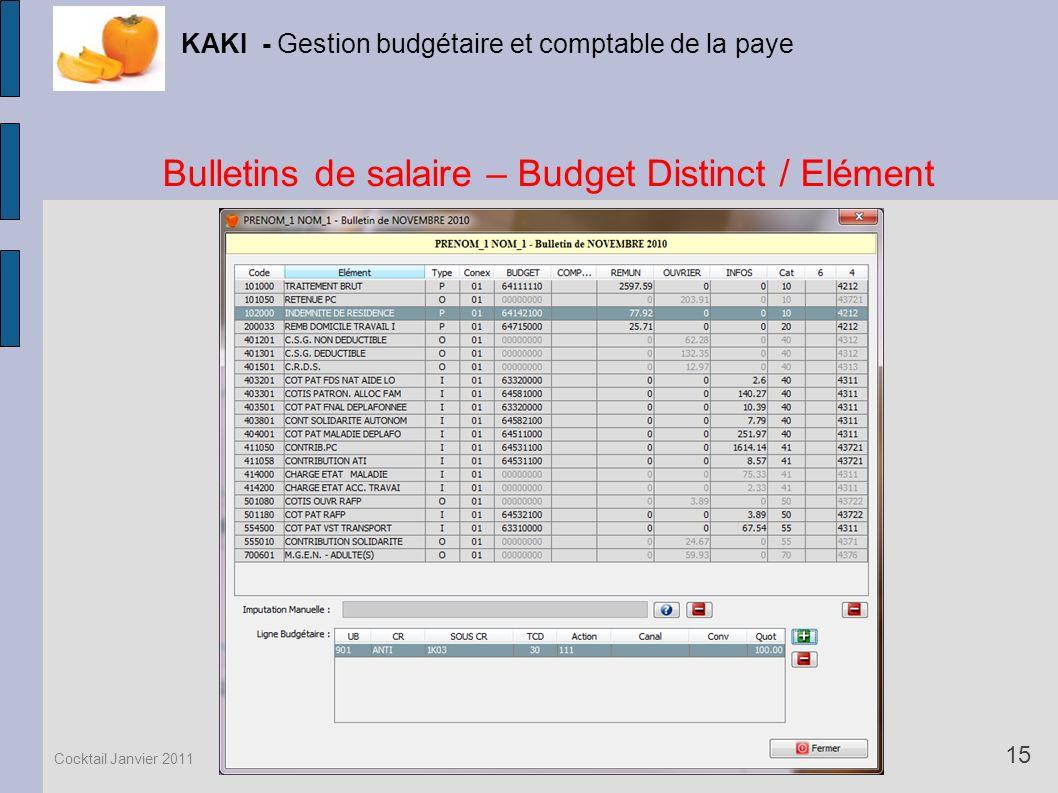 Bulletins de salaire – Budget Distinct / Elément