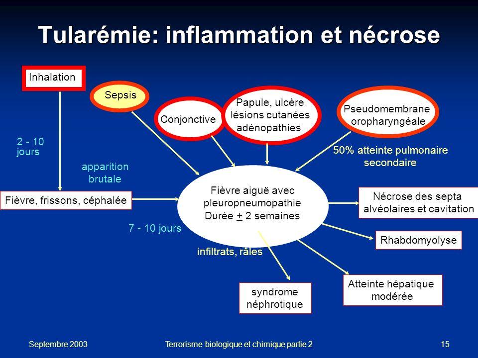 Tularémie: inflammation et nécrose