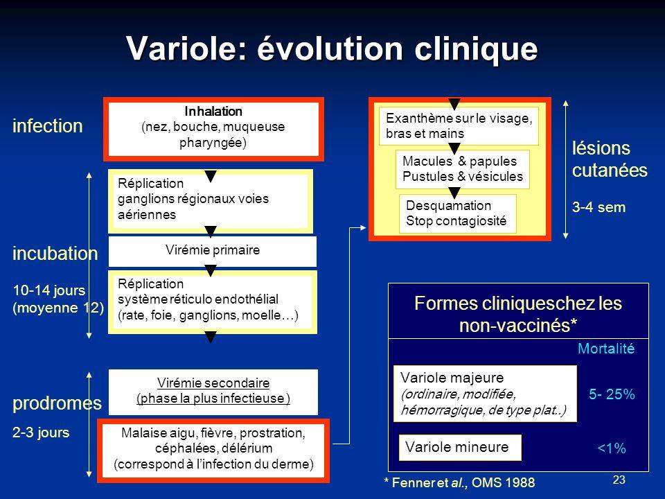 Variole: évolution clinique