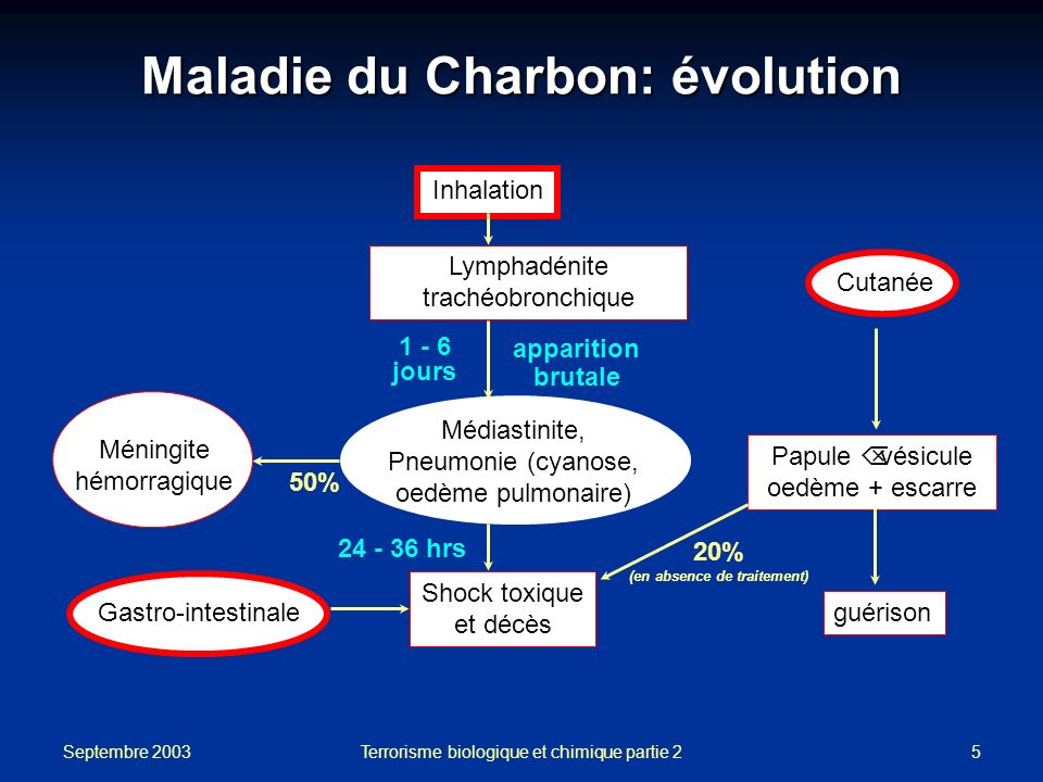 Maladie du Charbon: évolution