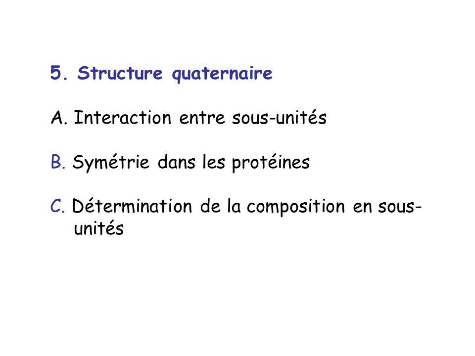 5. Structure quaternaire