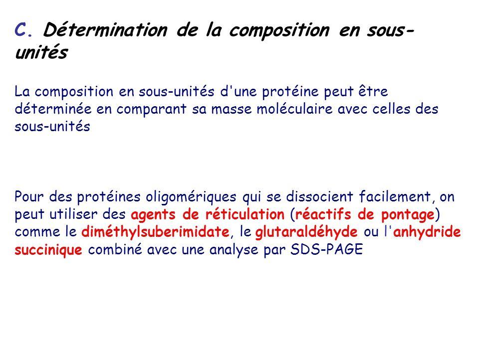C. Détermination de la composition en sous-unités