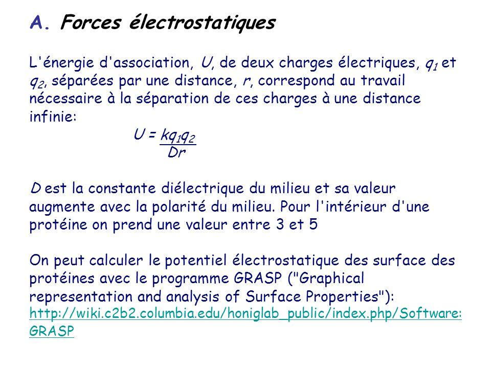 A. Forces électrostatiques